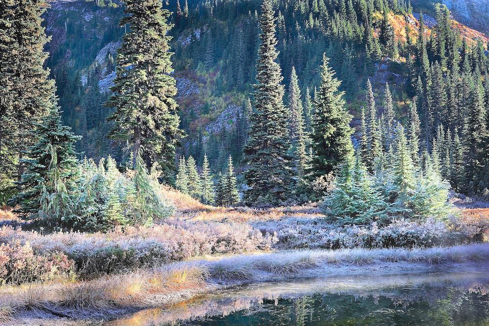 frosty autumn morning on Reflection Lake, Mt Rainier National Park, Washington State