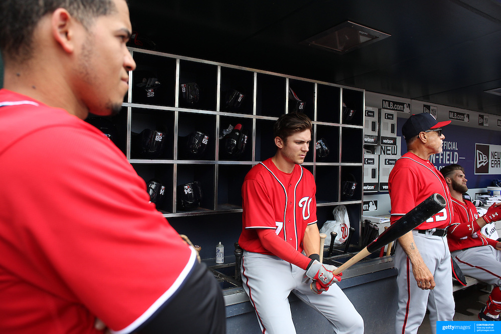 NEW YORK, NEW YORK - July 10: Trea Turner #7 of the Washington Nationals in the dugout preparing to bat during the Washington Nationals Vs New York Mets regular season MLB game at Citi Field on July 10, 2016 in New York City. (Photo by Tim Clayton/Corbis via Getty Images)