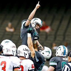 Sep 7, 2013; New Orleans, LA, USA; Tulane Green Wave kicker Cairo Santos (19) celebrates after making a field goal during the second quarter of a game against the South Alabama Jaguars at the Mercedes-Benz Superdome. Mandatory Credit: Derick E. Hingle-USA TODAY Sports