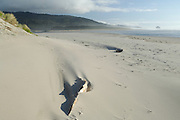 Sand Dunes, Dunes, Pacific City, Oregon, Pacific Ocean, Ocean, Brookings, Oregon Coast Highway, Pacific Coast Highway, Highway 101, Oregon Coast, Oregon