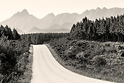 A brilliant white dust road leads out of the Tsitsikamma National Park forest and heads towards peak after knife edge peak of the mountain range beyond.<br />