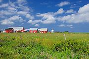 Red buildings in farm yard<br /> Park Corner<br /> Prince Edward Island <br /> Canada