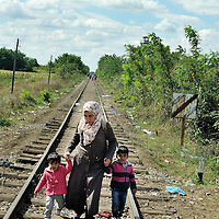 Syrian refugee mother with chidlren walking along an old railway line, just about to across the border from Serbia into Hungary. Refugees, mostly from Syria and Afghanistan, simply walked through a hole in the border fence with Serbia, only to be stopped by police and held in a field a kilometre away close to the town of Röszke.  The official border reception centres are full and refugees must camp on the ground, dependent on food donated by volunteer groups