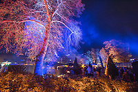 Kari Kola's Magical Garden in Eindhoven, part of the Glow Light Festival.