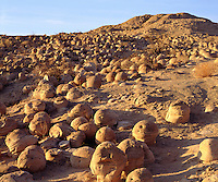 I took photos of the unusual geology in this desert pumpkin patch that are round sandstone formations covering the arid landscape.