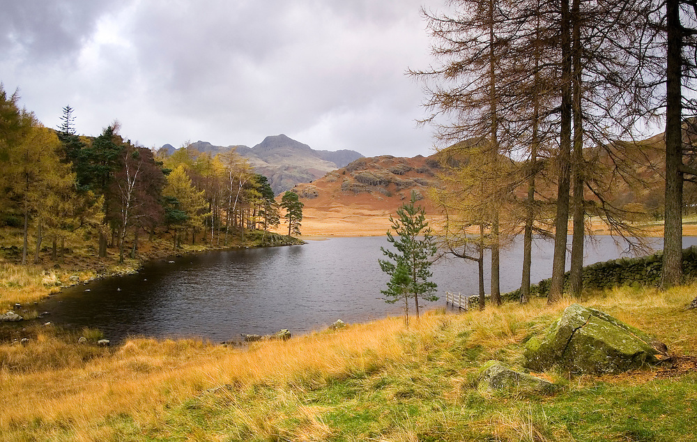 An overcast November day still couldn't detract from the beauty of Blea Tarn.