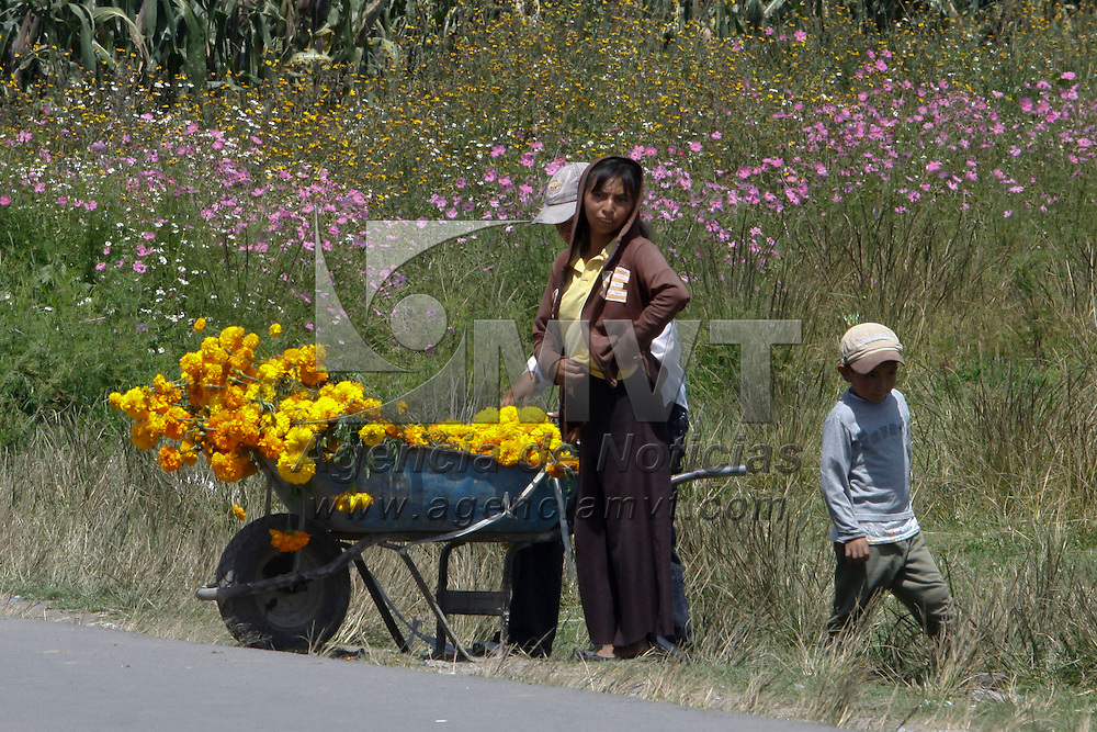 TOLUCA, México.- En delegaciones como la de San Pablo Autopán ya comenzó la venta de la flor de muerto, el cempazuchitl, las mujeres recorren las principales calles con esta vistosa flor. Agencia MVT / Crisanta Espinosa. (DIGITAL)