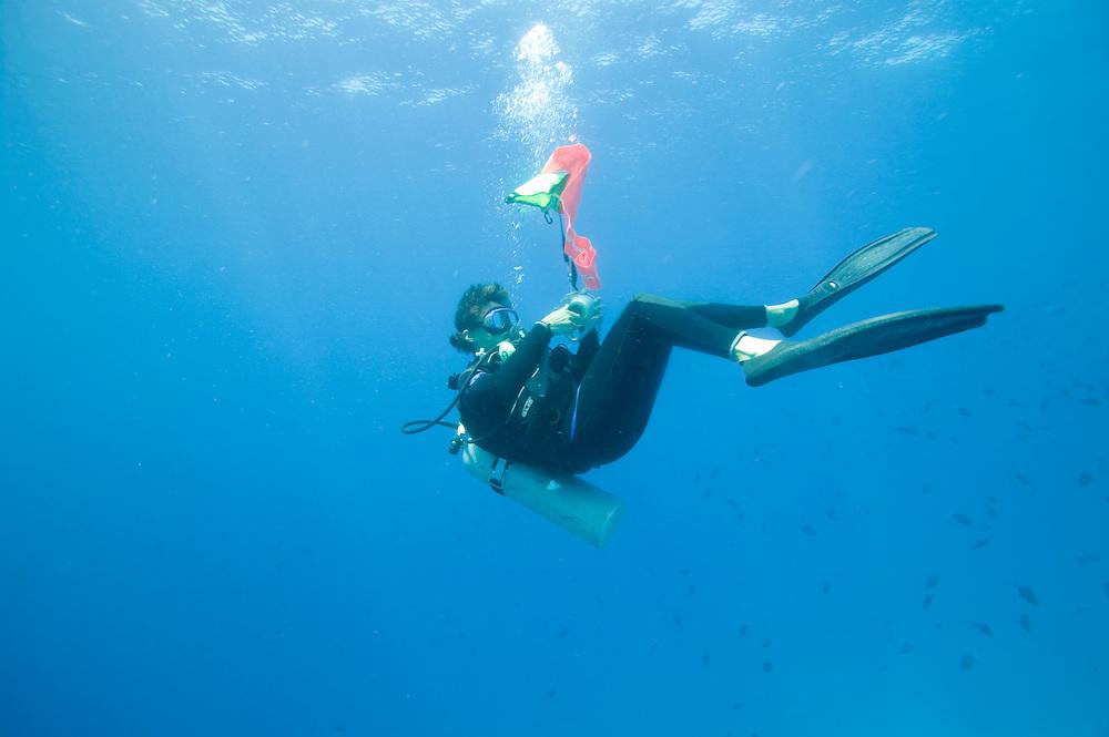 Africa, Tanzania, Zanzibar, Matemwe Bay, Scuba Dive Master inflates safety marker while approaching surface in Indian Ocean