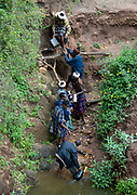 DROUGHT IN ETHIOPIA<br /> <br /> The Borana tribe, part of Oromo people who make up around a third of the Ethiopian population, is suffering from drought for months. Cows are dying, meanwhile many people are complaining the lack of support from the government, thus generating massive uprisings, repressions and killing hundreds of protesters.<br />  Borana live in Kenya, Ethiopia and Somalia with a population of 500,000. They are semi pastoralists. Their life depends on their livestock, which are their only wealth. Their cattle are used in sacrifices and also as dowry or to pay legal fines. For one year, there has been no rain and more than 15,000 cows have died in Ethiopia.<br /> <br /> Photo shows: Borana clans own their own wells that run for centuries. They are vital in these Borana arid areas.<br /> The wells are called the singing wells: the young, strong men carry the water from the well to the top where people and animals wait for their turn. The songs are usually about the cattle. Singing is a way to keep a good tempo in the chain.<br /> Conflicts over water are forbidden. If someone starts a fight, he will have to sacrifice one cow or risk being banned from the wells which is virtually a death penalty in the community.<br /> But due to the drought, those wells are mostly dry, and people must find other solutions...<br /> ©Eric lafforgue/Exclusivepix Media