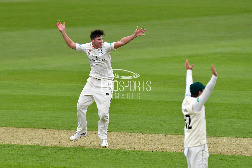 Wicket - Josh Tongue of Worcestershire appeals and then celebrates taking the wicket of Hashim Amla of Hampshire during the Specsavers County Champ Div 1 match between Hampshire County Cricket Club and Worcestershire County Cricket Club at the Ageas Bowl, Southampton, United Kingdom on 13 April 2018. Picture by Graham Hunt.