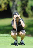 Bildnummer: 14377998  Datum: 30.08.2013  Copyright: imago/Icon SMI<br /> August 30, 2013: Karrie Webb lines up a putt during second round play at the Safeway Classic at Columbia-Edgewater Country Club in Portland, Oregon. GOLF: AUG 30 LPGA Golf Damen - Safeway Classic - Second Round <br /> <br /> Norway only