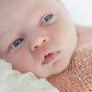 Walden Newborn & Family