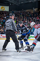 KELOWNA, CANADA - DECEMBER 30: Linesman Tim Plamondon stands at the face off between Eric Florchuk #14 of the Victoria Royals and Nolan Foote #29 of the Kelowna Rockets on December 30, 2017 at Prospera Place in Kelowna, British Columbia, Canada.  (Photo by Marissa Baecker/Shoot the Breeze)  *** Local Caption ***