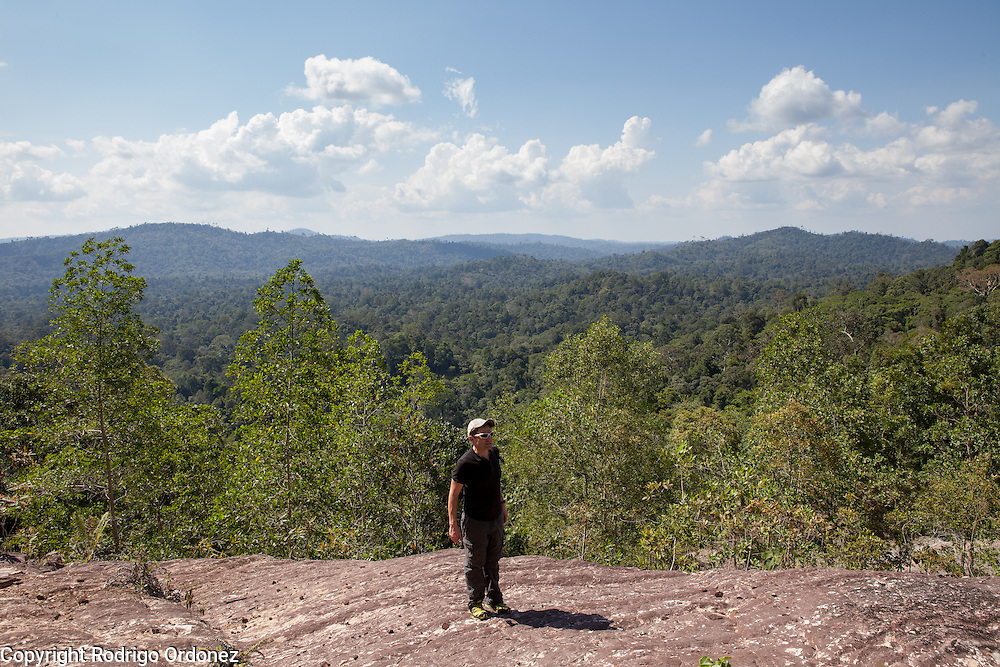 Justin Adams, Global Managing Director for Lands at The Nature Conservancy, enjoys the panoramic view of forests and tree canopies at the Arsari Lestari conservation area in Penajam Paser Utara district, East Kalimantan, Indonesia, on March 12, 2016. <br /> (Photo: Rodrigo Ordonez)