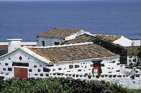 Portugal, Archipel des Açores, Île de Pico, Cais do Mourato // Portugal, Azores archipelago, Pico island, Cais do Mourato