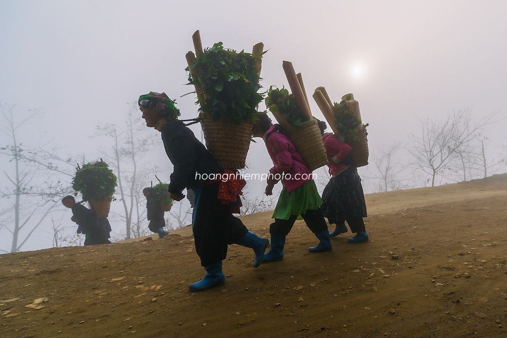 Vietnam Images-People-Minority people-Y-tý-Sapa hoàng thế nhiệm