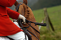 Fox Hunting.England, February 5th, 2005 - form and colour.
