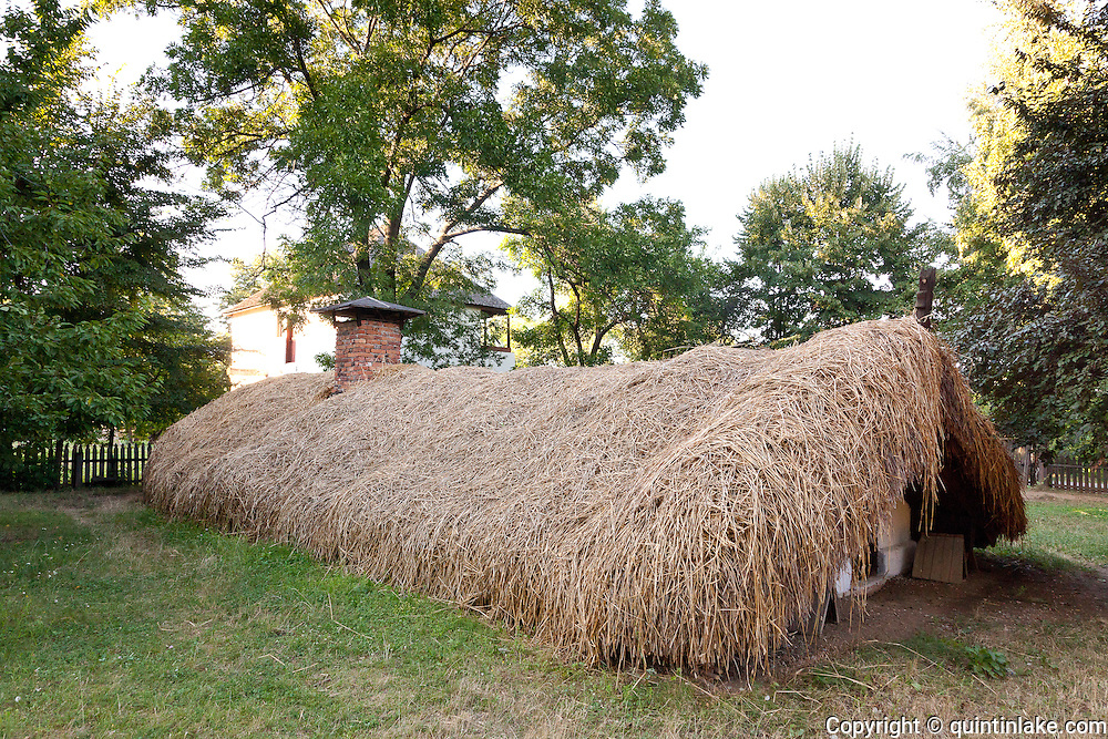 """Half buried subterranian house with thatched roof an soak walls and frame house Castranova, Dolj. At the entrance two special beams """"cosorbi"""" with two extended outer ends in the form of horse heads were aimed at defending the house from evil spirits. The house design evolved to combat the harsh winds and big temperature difference between summer and winter. Built C19. Dimitrie Gusti National Village Museum (Muzeul Satului) in Bucharest, Romania"""