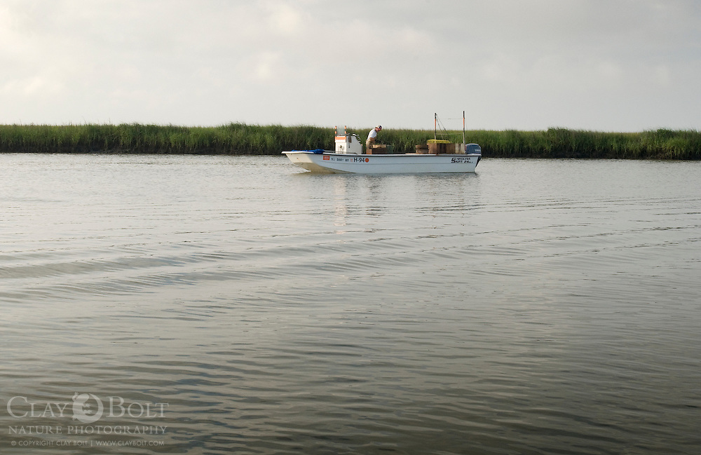A South Carolina fisherman checks a crab trap near Jeremy island, Intracoastal Waterway, McClellanville, SC