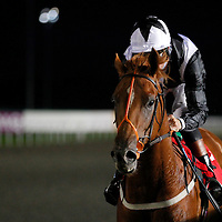 Day Of Conquest and Richard Hughes winning the 7.45 race