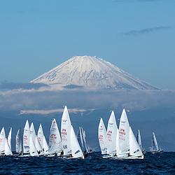2014 470 national championship 江の島470全日本選手権