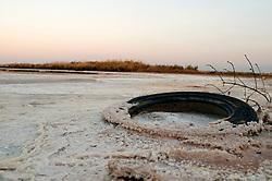 Il complesso produttivo delle saline è situato nel comune italiano di Margherita di Savoia (nome dato dagli abitanti in onore alla regina d'Italia che molto si adoperò nei confronti dei salinieri) nella provincia di Barletta-Andria-Trani in Puglia. Sono le più grandi d'Europa e le seconde nel mondo, in grado di produrre circa la metà del sale marino nazionale (500.000 di tonnellate annue).All'interno dei suoi bacini si sono insediate popolazioni di uccelli migratori e non, divenuti stanziali quali il fenicottero rosa, airone cenerino, garzetta, avocetta, cavaliere d'Italia, chiurlo, chiurlotello, fischione, volpoca..Primo piano di un vecchio pneumatico ricoperto dal sale presente sulle sponda del bacino