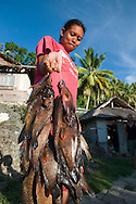 Pulau Batudaka, Togean Islands, Central Sulawesi, Indonesia. a girl with the fish catch of the day. The Bajau Sea Gypsies one roamed the seas as nomads. Nowadays they live an empoverished life of fishing and collecting trepang sea cucumbers from their stilted villages. In the 1990's they started cyanide and dynamite fishing causing major damage to the reefs and their future fish stocks. The Togean or Togian Islands are an archipelago of 56 islands and islets, in the Gulf of Tomini, off the coast of Central Sulawesi, in Indonesia. The dark green of the islands and the cristal clear water is a perfect setting and has attracted many travellers during the last years. Travellers endure the long journey in search of the mythical beach paradise. Photo by Frits Meyst/Adventure4ever.com