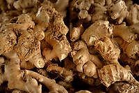 Fresh NC ginger root for sale at the State Farmers' Market.