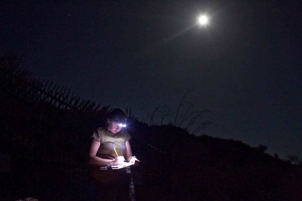 Ana Cerro logs in her data after counting lesser long-nosed bats (endangered) as they exit an abandoned mine on the Cabeza Prieta National Wildlife Refuge. Lesser long-nosed bats are migratory and spend their winters in Mexico, returning to Arizona as early as the second week in April. Nectar and pollen from the flowers of saguaro and organ pipe cactus are the core of the bat's diet in early summer. Later in the summer, as they move up in elevation, they feed on agave. Biologists and researchers working with species like bats, bees and snakes often struggle for resources and attention. Once a species is listed under the Endangered Species Act, those resources are more readily available, but by then, the species is also in deeper trouble.