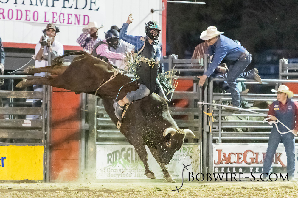 Bull rider Colton Kent rides Summit Pro Rodeo's Lady Luck in the second performance of the Elizabeth Stampede on Saturday, June 2, 2018.
