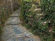 Stone pathway in Vernazza, Cinque Terre, Italy