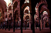 SPAIN, ANDALUSIA, CORDOBA 'La Mezquita' Great Mosque arches