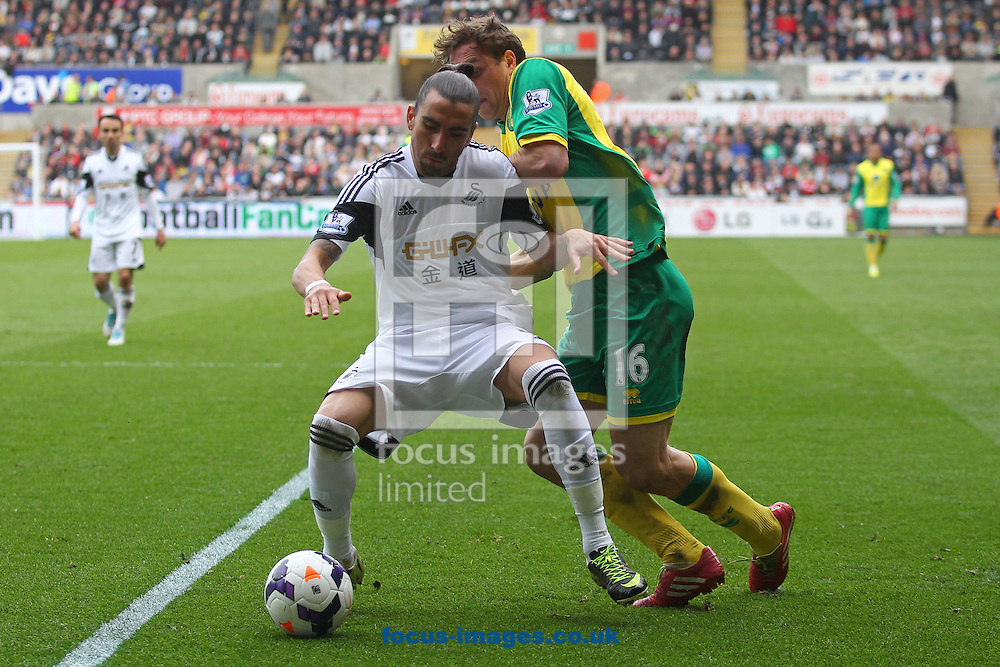 Johan Elmander of Norwich and Chico Flores of Swansea in action during the Barclays Premier League match at the Liberty Stadium, Swansea<br /> Picture by Paul Chesterton/Focus Images Ltd +44 7904 640267<br /> 29/03/2014