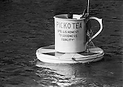 Picko Tea Cup in the river Liffey, Dublin..05.08.1965