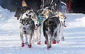 Mar 2, 2019-Dog Sled Racing-Iditarod Ceremonial Start