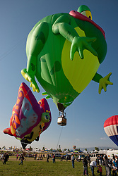 """Great Reno Balloon Race 7"" - Photograph of the hot air balloons Hopper T. Frog and Betty Jean. They were giving kids tethered balloon rides during 2011 Great Reno Balloon Race."