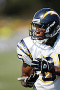 Tight end Antonio Gates catches a pass during workouts at the San Diego Chargers summer training camp at the Home Depot National Training Center in Carson, CA on 08/04/2004. ©Paul Anthony Spinelli