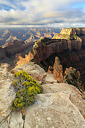 A view from the North to the South Rim of the Grand Canyon at Cape Royal