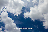 63891-02501 Cumulus clouds in blue sky, Marion Co., IL