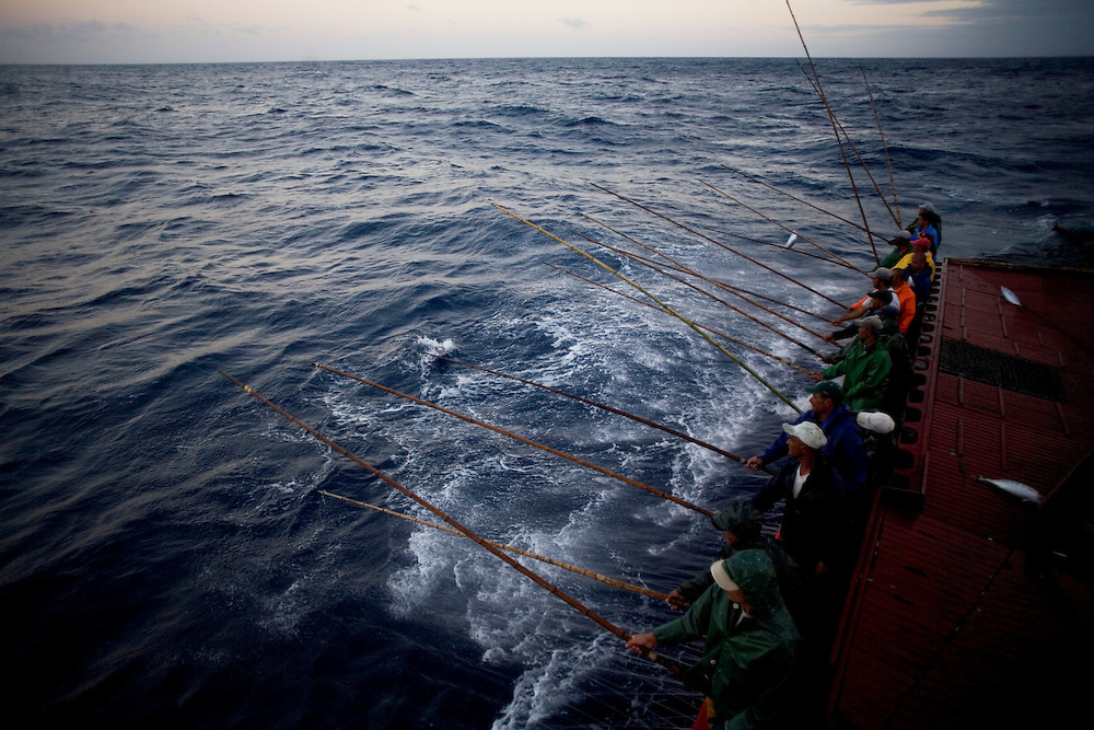 Traditional tuna fishing in the sea of Azores, in the Atlantic ocean, Portugal.