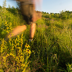 A man walks through a field in Meredith, New Hampshire.