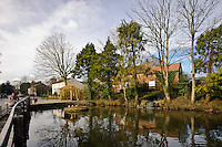 Village Pond, Walkington village East Yorkshire.