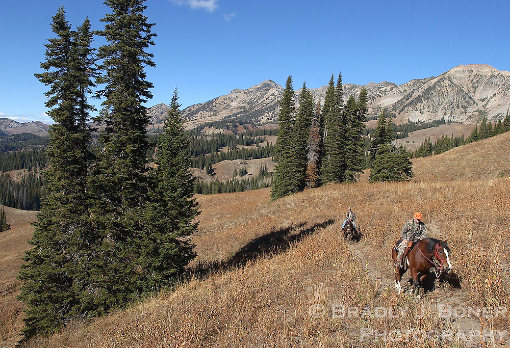 NEWS&GUIDE PHOTO / BRADLY J. BONER.Client hunters John Louke and James Griffith lead their horses up a ridge south of Pinnacle Peak in the Gros Ventre Wilderness in mid-October.  The hunters would then leave the horses and hunt on foot back to the camp.