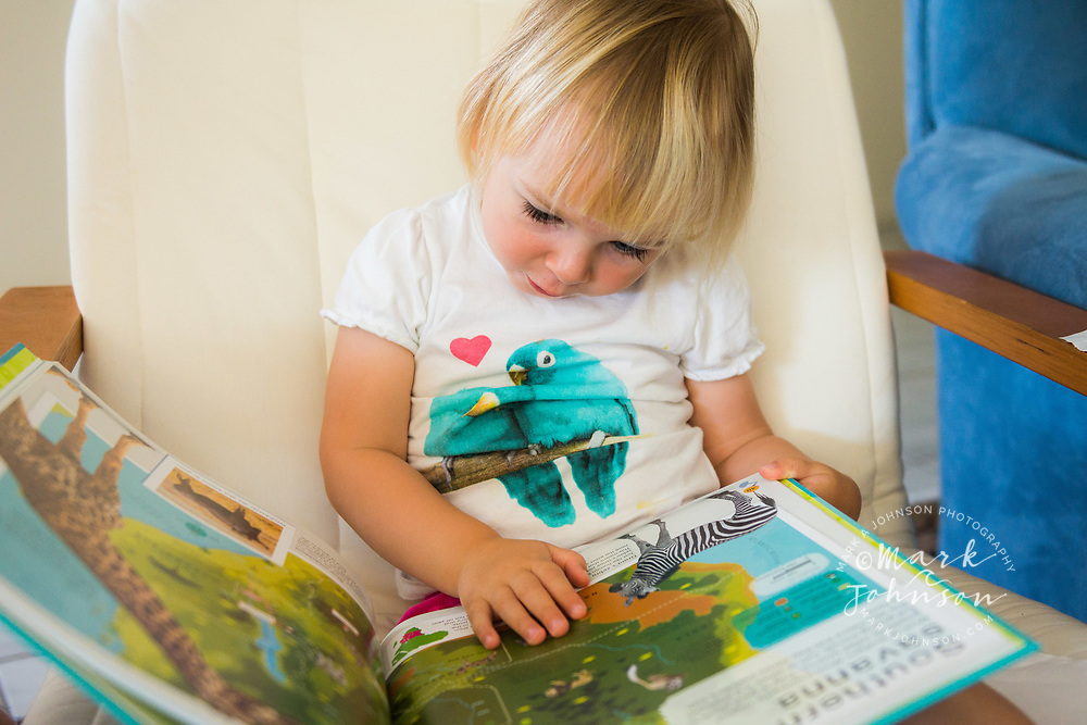 2 year old girl engrossed in reading a book on her own people ****Model Release available
