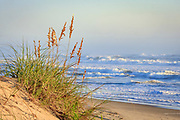 Sunny Cape Hatteras beach morning on the Outer Banks of NC.