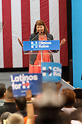 Representative Ann Kirkpatrick campaigning for Hillary Clinton in Phoenix, AZ. on October 20, 2016. Spot News, General News images for Newspapers by Photojournalist Pablo Robles.