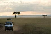 Safari minibus driving on dirt road at sunset in Masai Mara National Park, Kenya.