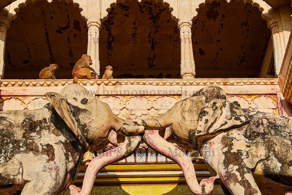 Inde, Rajasthan, Ville de Bundi, Le Palais // India, Rajasthan, Bundi castle