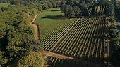 Durant vineyards aerials - all