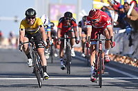 Arrival Sprint, KRISTOFF Alexander (NOR), Mark CAVENDISH (Gbr), during the 15th Tour of Qatar 2016, Stage 2, Qatar University - Qatar University (145,5Km), Test Event Doha Road World Championships 2016, on February 9, 2016 - Photo Tim de Waele / DPPI